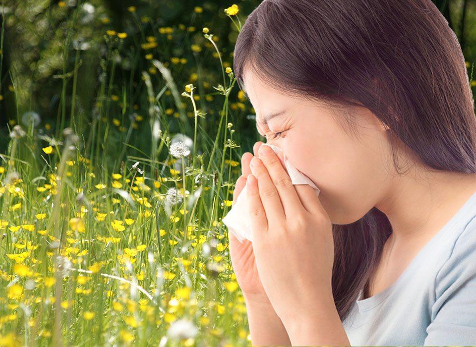 hypnose, allergie saisonnieres, allergie aux chats, chiens, acariens, pollen
